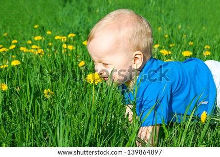 the small child smells flowers on a meadow - stock photo