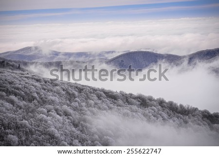 The snow-covered trees in the Appalachian Mountains in the early morning with the fog in the valley. Taken from the top of Round Bald at Roan Mountain.  - stock photo