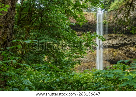 The South Falls seen through the foliage of trees in Silver Falls State Park Oregon - stock photo