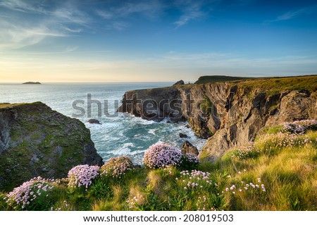 The southwest coast path near Longcarrow Cove in Cornwall - stock photo