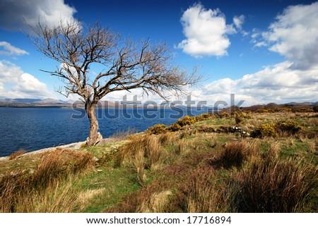 The spring ,Ireland - stock photo