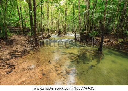 the stream and forest at emerald pool in Krabi Province,Thailand - stock photo