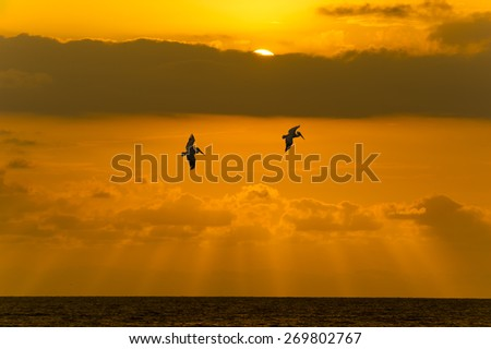 The sun shows itself behind the clouds as two souls glide over the ocean. - stock photo