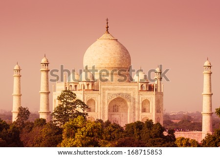 The Taj Mahal as seen over the treeline from a distance with a warm tone. - stock photo