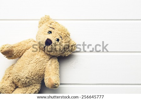 the teddy bear on white table - stock photo