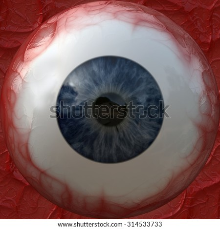 The texture of the eyeball. - stock photo