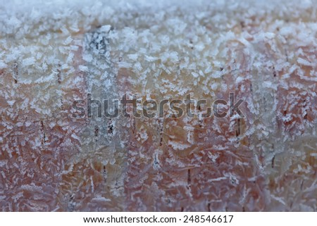 The texture of the ice crystals (frost) on the bark of birch - stock photo