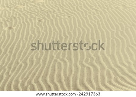 The texture of the sand dunes. Sunny day. - stock photo
