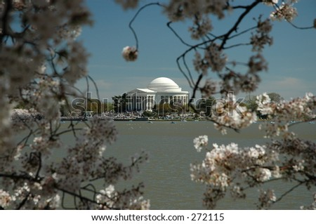 The Thomas Jefferson Memorial during the Annual Cherry Blossom Festival in Washington, DC - stock photo