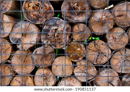 the timber and log for abstract background - stock photo
