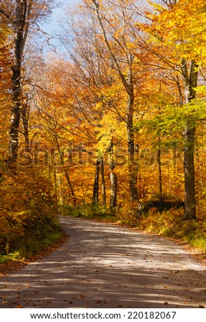 The Toll Road on Mt. Mansfield in autumn, Stowe, Vermont, USA - stock photo