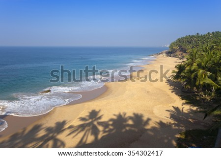 The top view on a sandy beach of the sea and a palm tree. India - stock photo