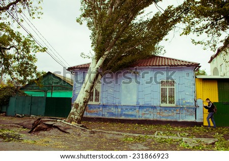The tree which fell to the house - stock photo