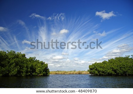 The Turner River in Big Cypress National Preserve, Florida Everglades - stock photo