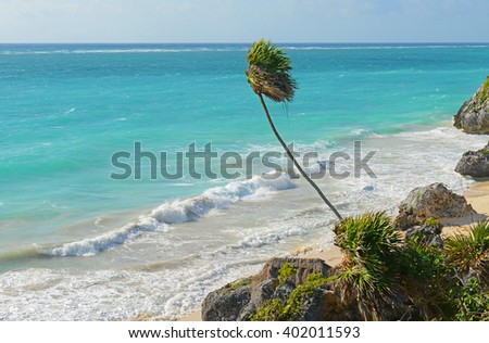 The turquoise blue waters at Tulum beach, Mexico.  - stock photo