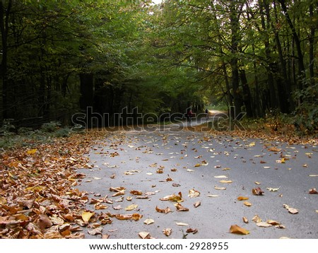 The twisting road doted with leaves and two bikes in autumn park - stock photo