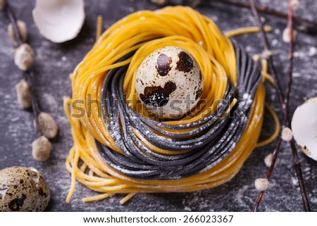 The two-color pasta homemade raw materials in the form of nests with quail egg and willow on a dark background.Easter decorations, selective focus. - stock photo
