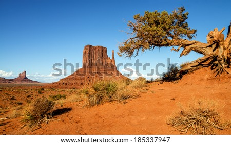 The unique landscape of Monument Valley, Utah, USA.  - stock photo