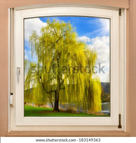 The view through a window revealing a beautiful tree on a glorious sunny spring day - stock photo