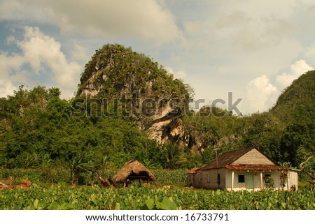 The Vinales Valley - stock photo