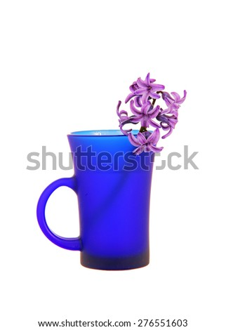 The violet hyacinth in a blue cup  - stock photo