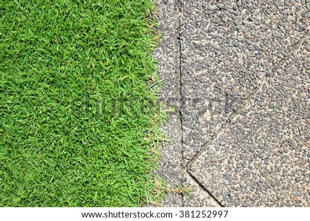The Walk path in the park with green grass - stock photo