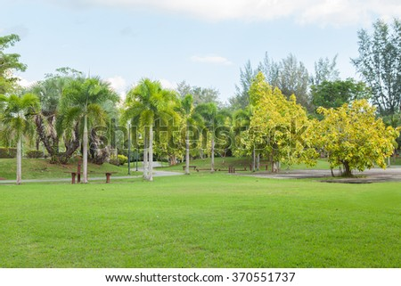 The walk way in the park at Thailand. - stock photo