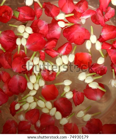 the water mixes the petal use in Songkran festival of thailand - stock photo