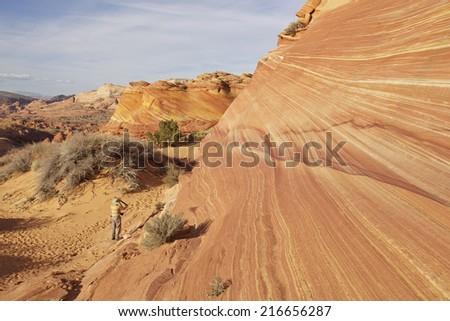 The Wave  Arizona, White Pocket area of Vermilion Cliffs National Monument  - stock photo