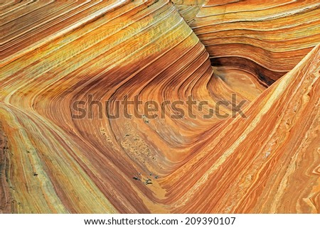 The Wave at Coyote Butte, Utah, USA. - stock photo