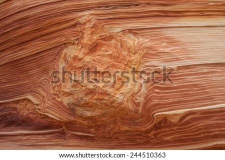 The Wave at Coyote Buttes - stock photo