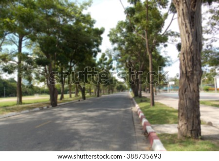 The way in the park,Blurry background. - stock photo