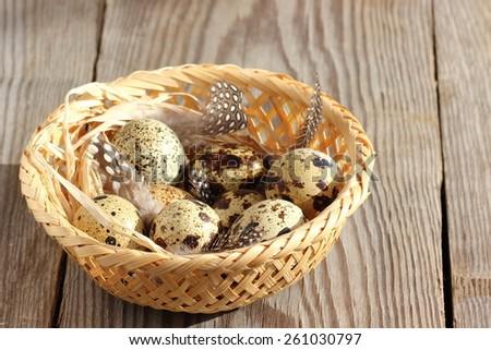 The wood basket filled with eggs of quails - stock photo