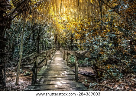 The wooden bridge walkway into the forest - stock photo