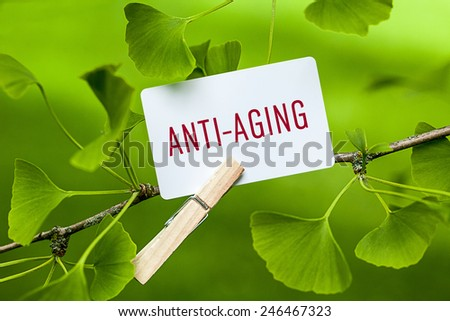 The Word Anti-Aging in a Ginkgo Tree - stock photo