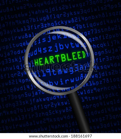 "The word ""Heartbleed"" revealed in blue computer machine code through a magnifying glass  - stock photo"