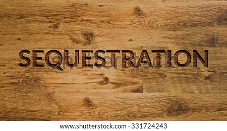 The word SEQUESTRATION Engraved in Wooden Background - stock photo