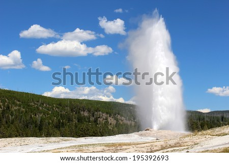 The world famous Old Faithful Geyser erupts in Yellowstone National Park on a beautiful, sunny summer day with a sky full of gorgeous clouds. - stock photo