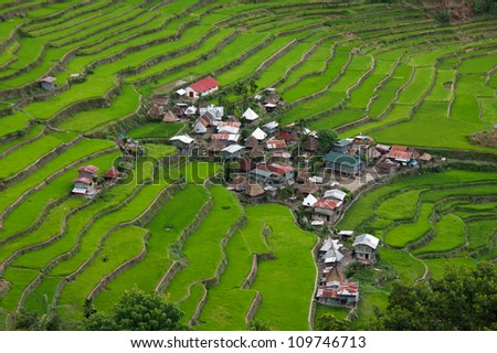 The world heritage Rice terraces in Batad, northern Luzon, Infugao province Philippines. - stock photo