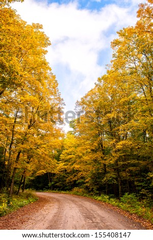 The yellow trees and the path in autumn under the cloudy sky - stock photo