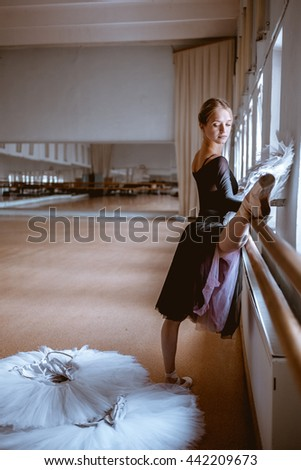 The young modern ballet dancer posing against the room background - stock photo