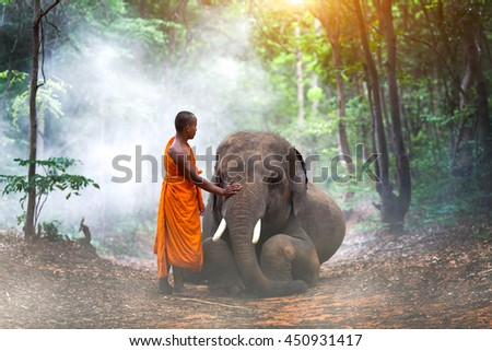 The young monk and a young elephant in the forest. - stock photo