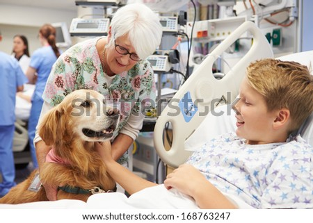 Therapy Dog Visiting Young Male Patient In Hospital - stock photo