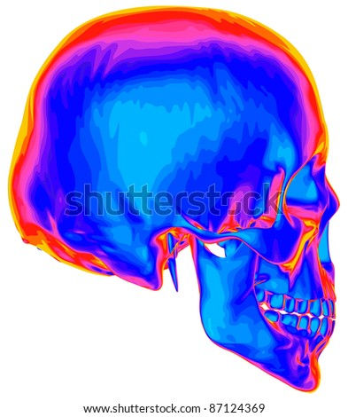Thermal image of the human skull, isolated on white background. Bitmap copy my vector ID 74509651 - stock photo