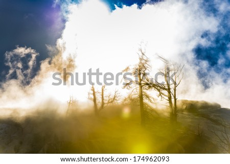 Thick Geyser Steam against Beautiful Winter Sunset sky  - Yellowstone National Park  - stock photo