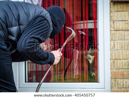 Thief against the dog - stock photo