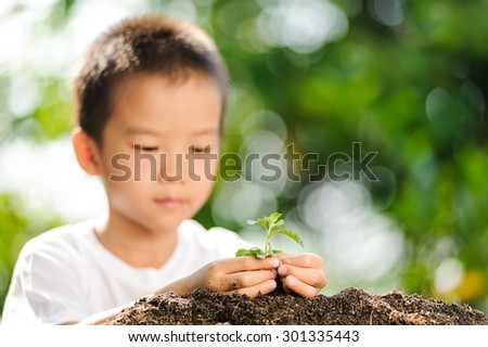 Thin focus at Asian boy hand holding young plant in hands on green background to plant on soil. Concept Earth day - stock photo