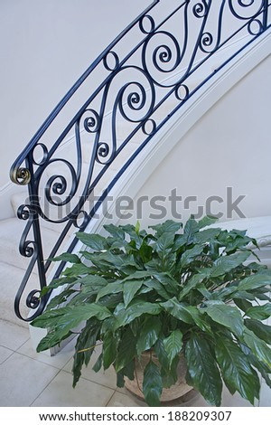 This is a pretty, modern and light staircase with black iron railing and a potted leafy plant set in vertical format.  Simple, clean and classic. - stock photo