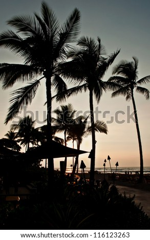 This is a tropical island silhouette beach scene, with palm trees in the horizon, a path in the foreground and the sunset in progress.  Beckoning a vacation. - stock photo