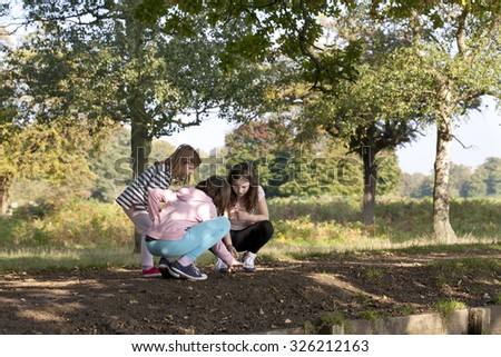 This is How Girls Explore. Three young girls are playing in the shade of a tree. The large expanse of a big park lies behind them in the sunshine. The girls are investigating something in the mud. - stock photo